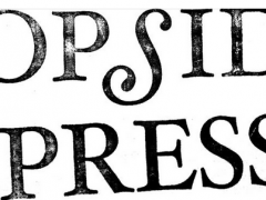 April 17, 2015   Poem reviewed by Topside Press!
